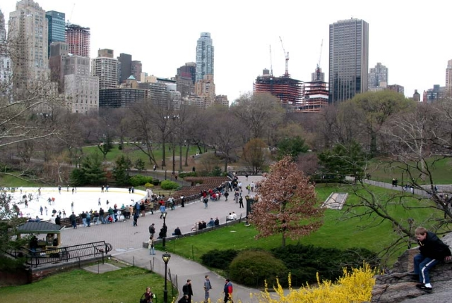 Take A Walk in Central Park