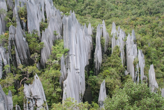 The Fascinating Mulu Caves