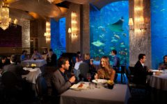 Underwater Restaurants Of The World