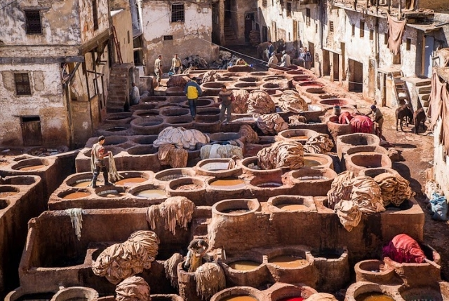 Visit A Tannery