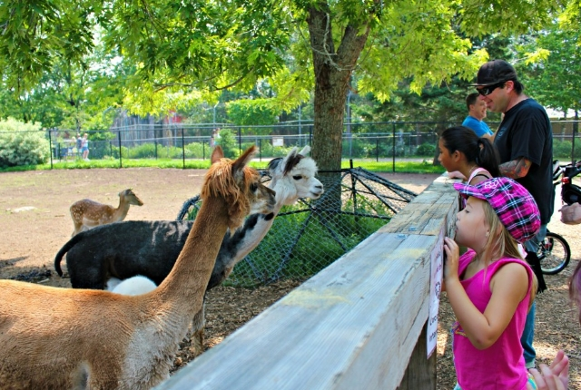 Visit Magnetic Hill Zoo