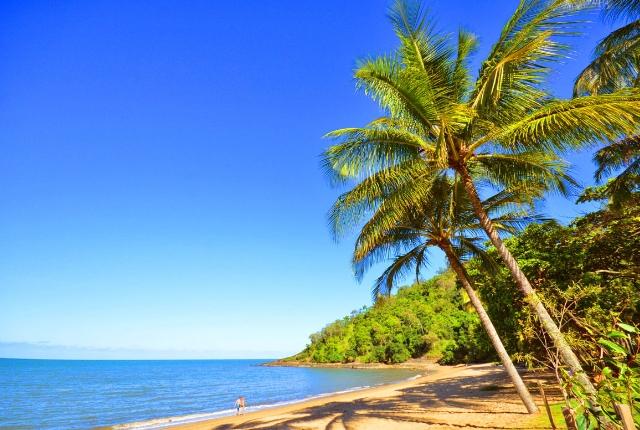 6 Unique Things To Do In Cairns Australia Traveltourxp Com