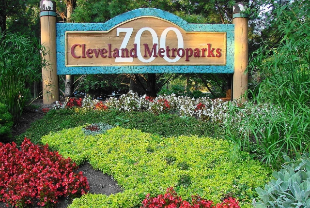 Metroparks Zoo In Cleveland