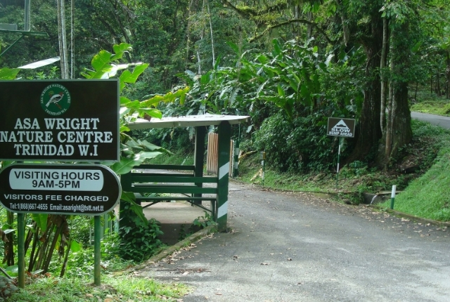 Asa Wright Lodge and Nature Centre In Trinidad