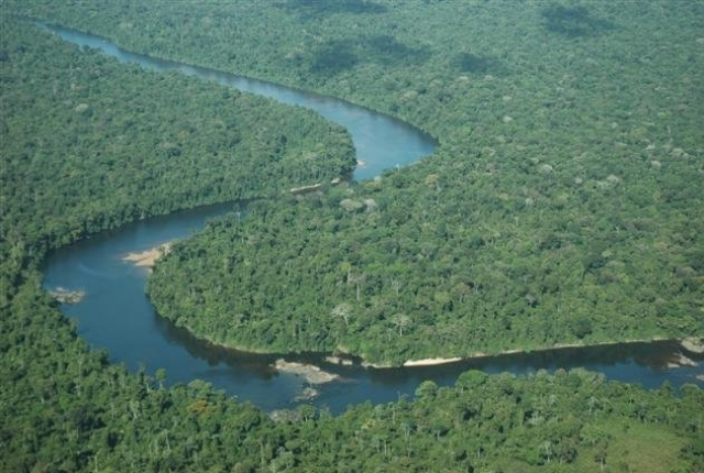 Coppename River