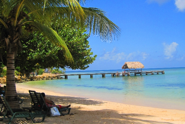 The Pigeon Point In Tobago