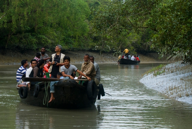 The Sunderban Forest
