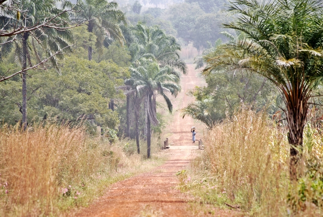 Visit The National Parks In Togo