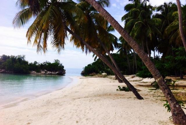 plage de noix de coco