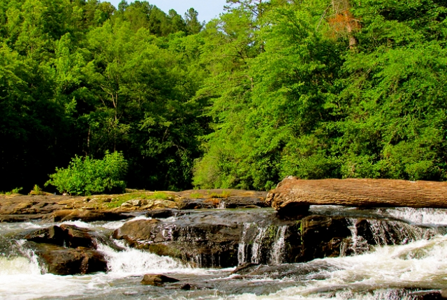 the-chattahoochee-oconee-national-forest
