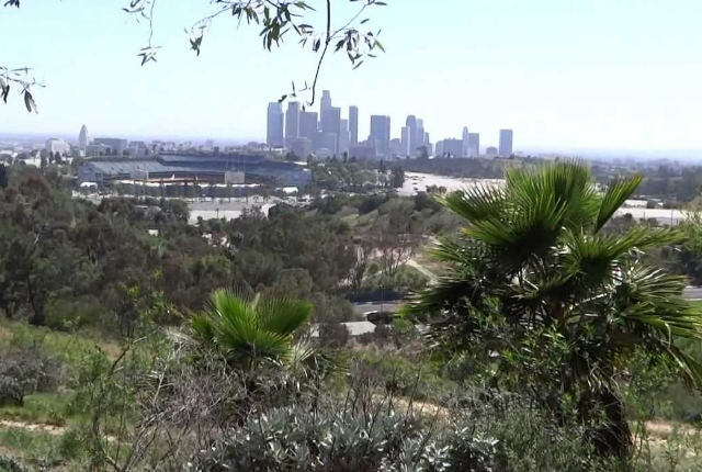 Angeles Point In Elysian Park