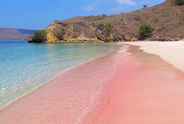 great-santa-cruz-island-pink-beach-philippines