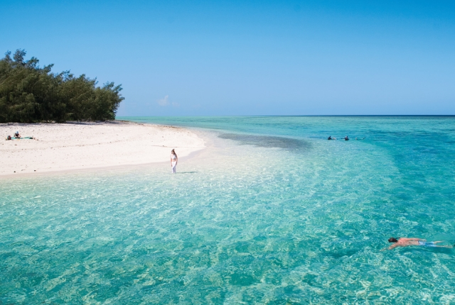 heron-island-queensland