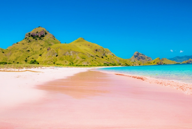 pink-beach-of-komodo-indonesia