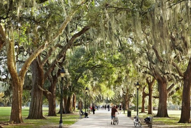 savannah-georgia-usa