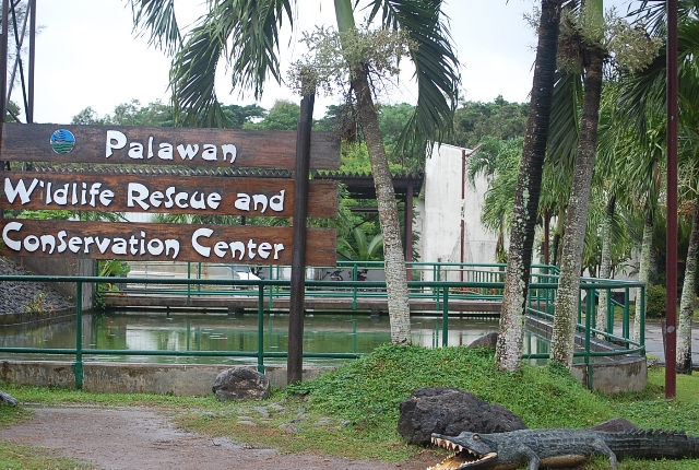 The Crocodile Farm