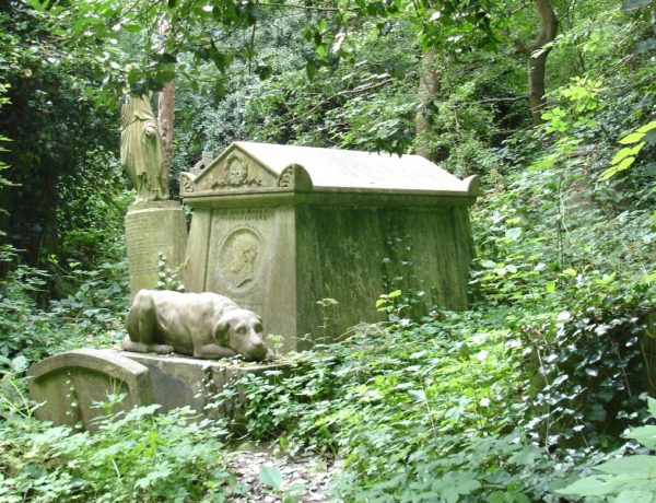 Terrifying Haunted Cemeteries In The World