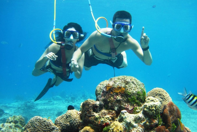 Scuba Diving And Snorkeling In Cozumel