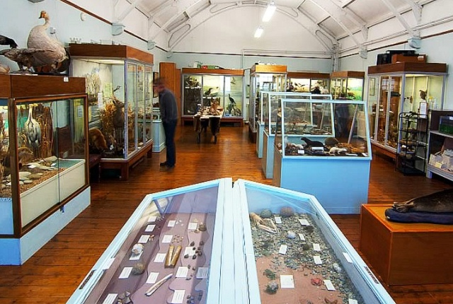 The Bute Museum