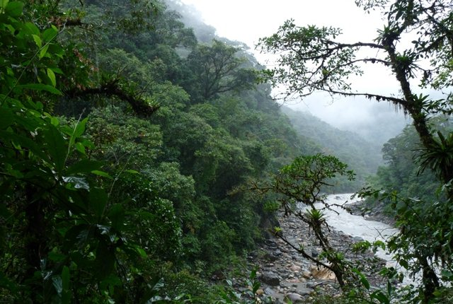 The Spectacular, Carrasco National Park