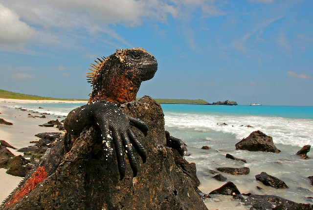 Galapagos Islands National Park