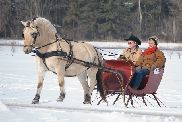 Sleigh Rides And Horse Riding