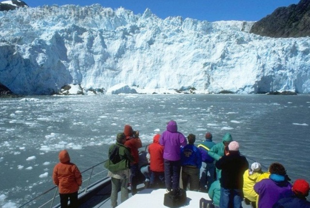Opt For Glacier And Wildlife Cruises